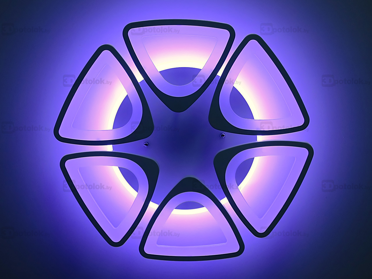 10006-6WHTBLYL_11_лого